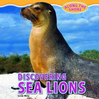 Discovering Sea Lions