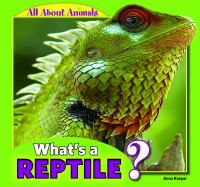 What's A Reptile?