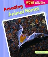 Amazing Animal Homes