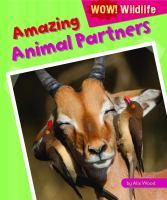 Amazing Animal Partners