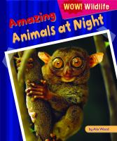 Amazing Animals at Night