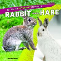 Tell Me the Difference Between A Rabbit and A Hare