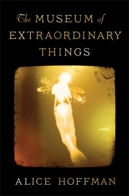 Cover image for The Museum of Extraordinary Things