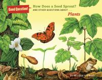 How Does A Seed Sprout?