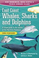 East Coast Whales, Sharks and Dolphins