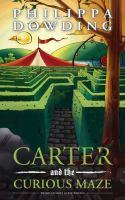 Carter and the Curious Maze