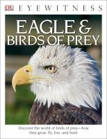 Eagle & Birds of Prey