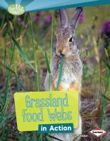 Grassland Food Webs in Action
