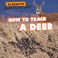 How to Track A Deer