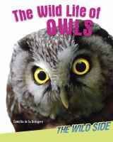 The Wild Life of Owls