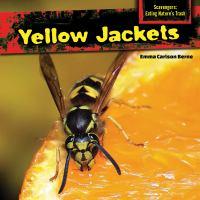 Yellow Jackets