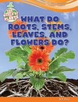 What Do Roots, Stems, Leaves, and Flowers Do