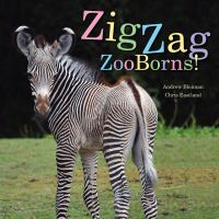Zigzag zooborns! : zoo baby colors and patterns
