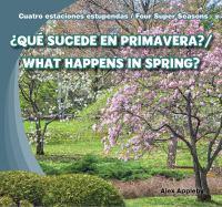 ¿Qué Sucede En Primavera?