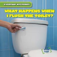 What Happens When I Flush the Toilet?