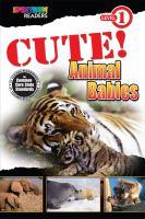 Cute! Animal Babies