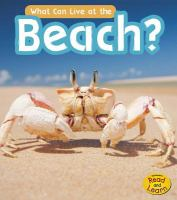 What Can Live at the Beach