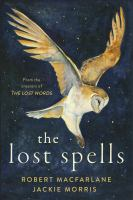 Image: The Lost Spells