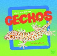 Get to Know Geckos