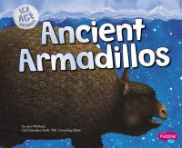 Ancient Armadillo
