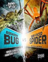 Assassin Bug Vs. Ogre-faced Spider