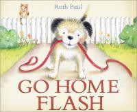 Go Home Flash