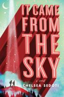 It came from the sky : a novel