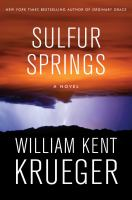 Sulfur Springs : a novel