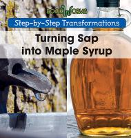 Turning Sap Into Maple Syrup