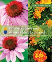 Perennial Plants And Annual Plants Explained