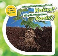 ¿Por Qué Las Plantas Tienen Raices?