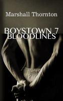 Boystown 7