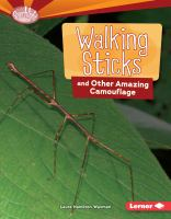Walking Sticks and Other Amazing Camouflage