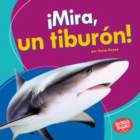 ¡Mira, un tiburón!