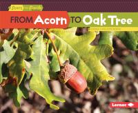From Acorn to Oak Tree