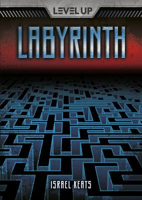 Labyrinth (book-cover)