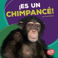 ¡Es un chimpancé!