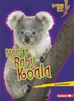 Meet A Baby Koala