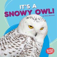 It's A Snowy Owl!
