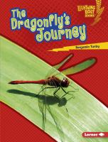 The Dragonfly's Journey