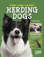 Collies, Corgis, and Other Herding Dogs