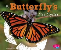 A Butterfly's Life Cycle
