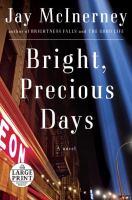 Media Cover for Bright, Precious Days : A Novel [large print].