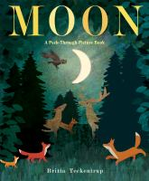 Moon : a peek-through picture book