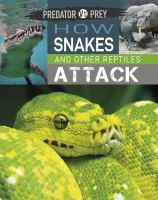 How Snakes and Other Reptiles Attack!