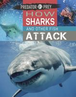 Predator Vs Prey: How Sharks and Other Fish Attack!