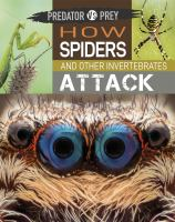 How Spiders and Other Invertebrates Attack!