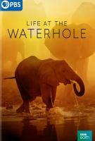 Life at the Waterhole (DVD)