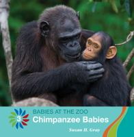 Chimpanzee Babies