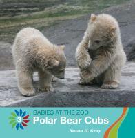 Polar Bear Cubs